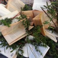 Livres et branches, future installation